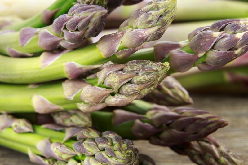 Asparagus Precautions
