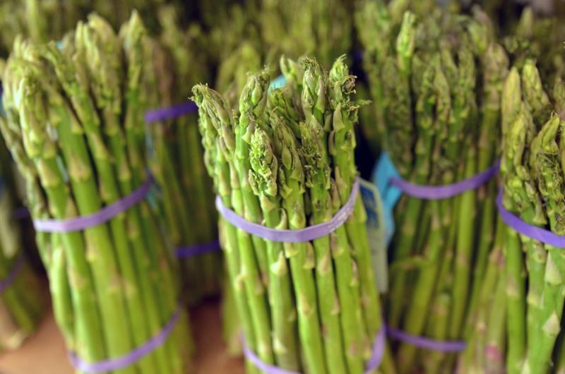 Asparagus and Rheumatism
