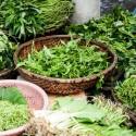 benefits-of-leafy-green-vegetables