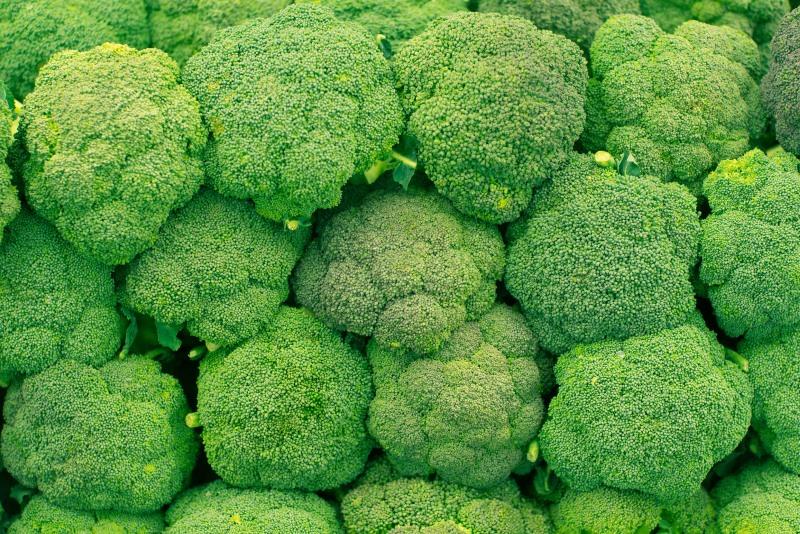 Broccoli Lowers Cholesterol Levels