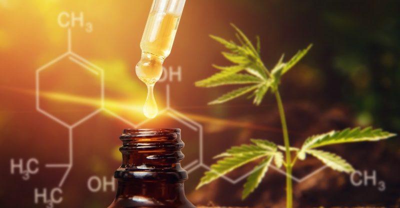 Cannabis CBD oil