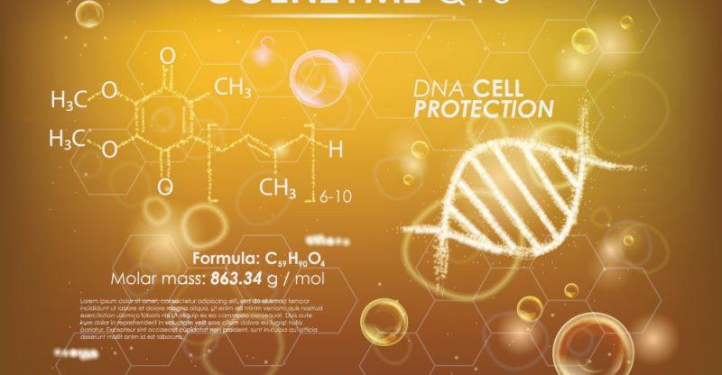 Coenzyme Q10 CoQ10 Benefits