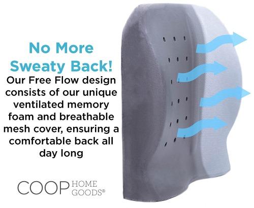 coop home goods lumbar cushion pillow