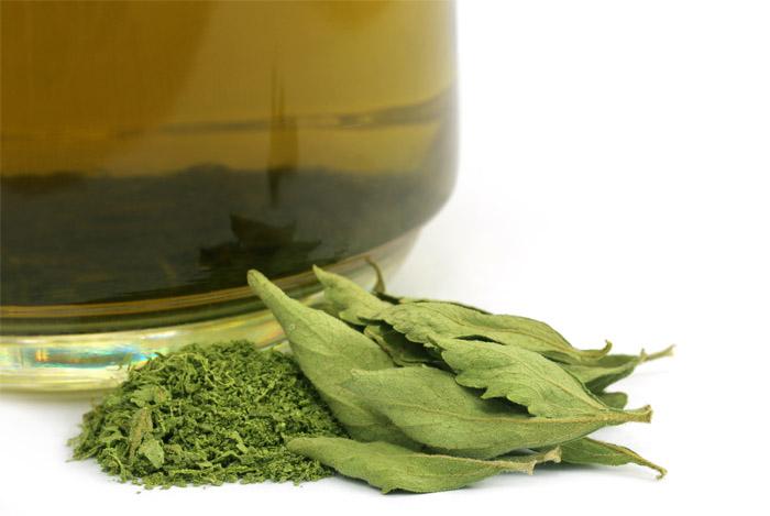 green-tea-and-genital-warts