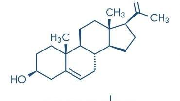 Health Benefits of Pregnenolone - 2