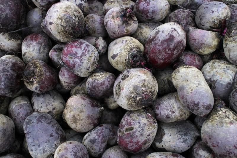 history-beets