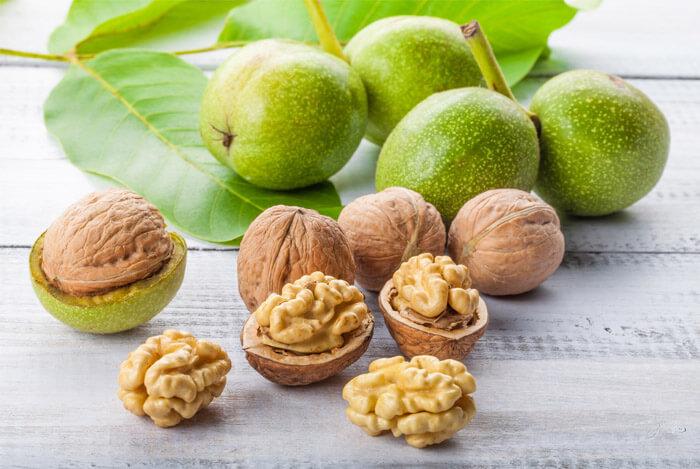 how-walnuts-grow