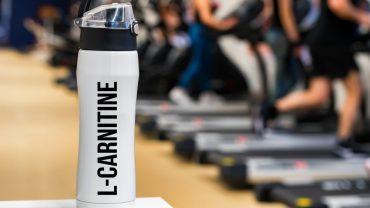 L Carnitine Benefits
