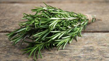 Rosemary-Benefits