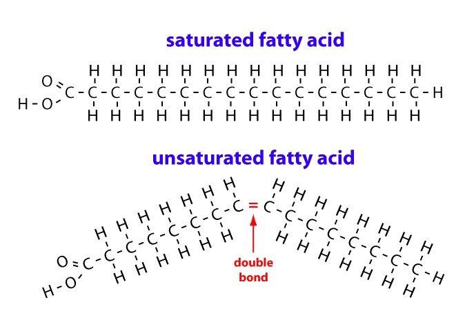 Saturated vs Unsaturated Fats - verzadigd vet vs onverzadigd vet gezond of ongezond + de risico's