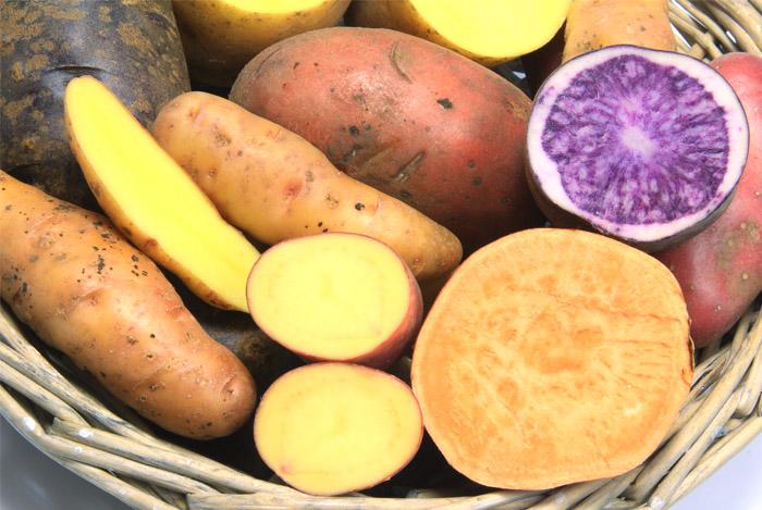 varieties-sweet-potatoes