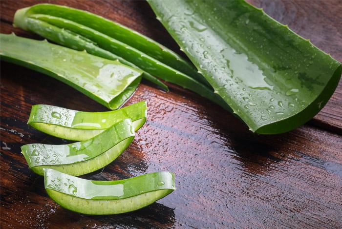 aloe-vera-leaf-cut-nutrition