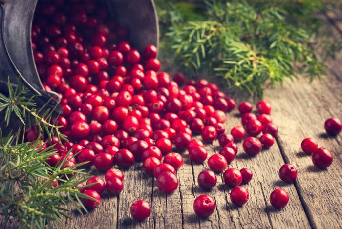 cranberries-as-cholesterol-medecine