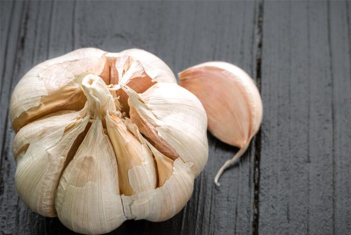 garlic-blub
