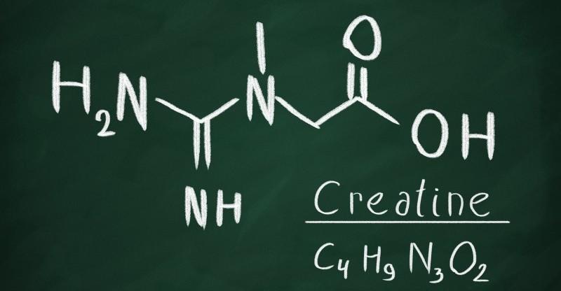 health benefits of creatine 800x416 - CREATINE 6 GEZONDE EIGENSCHAPPEN WAT IS CREATINE HOE WERKT HET EN IS HET VEILIG OM TE GEBRUIKEN ?