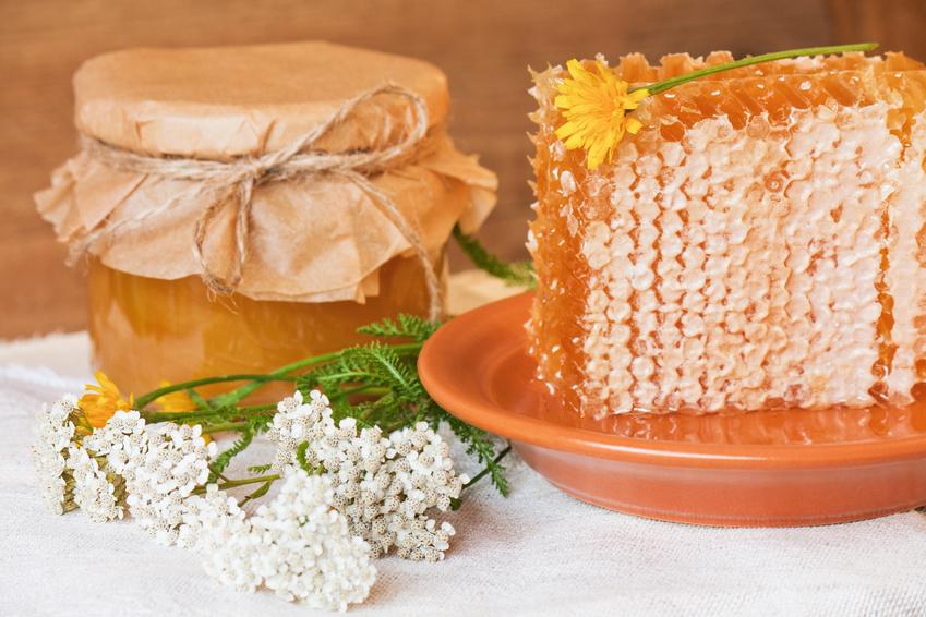 Bloem honing in honingraten en in een pot.
