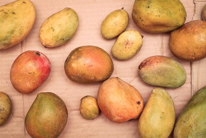 mangos-superfood