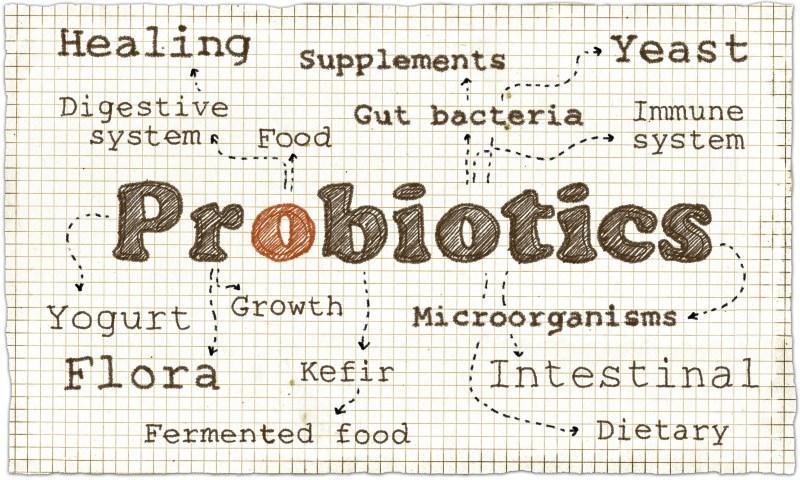 probiotics can make you feel happy