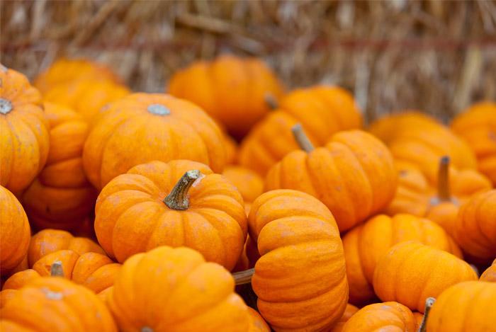 pumpkins-superfood