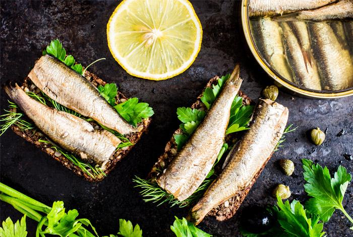 sardines for bone health