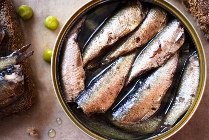 sardines can - 6 GEZONDE EIGENSCHAPPEN VAN HET ETEN VAN VIS
