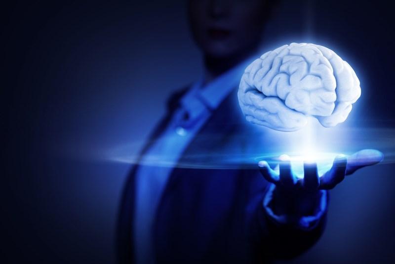spirulina Protects the Brain