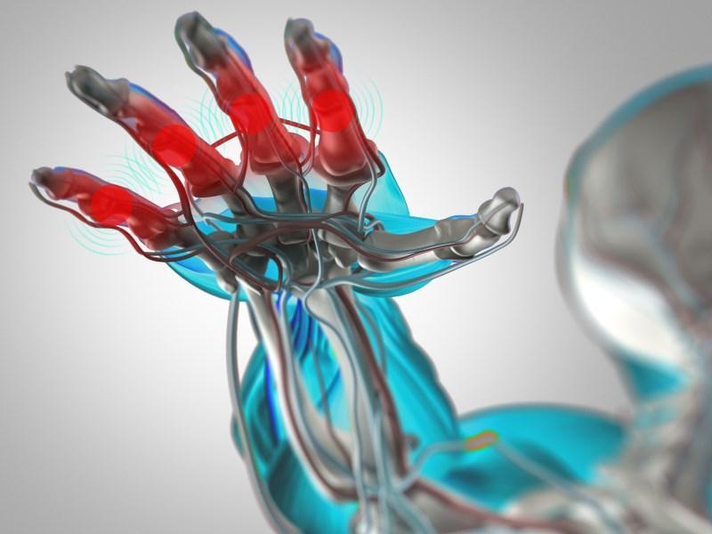 spirulina has Anti-Inflammatory Properties