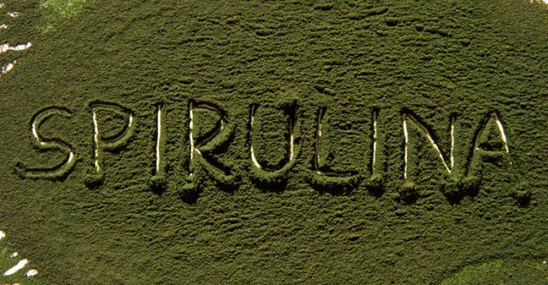 25 wetenschappelijk bewezen voordelen van Spirulina