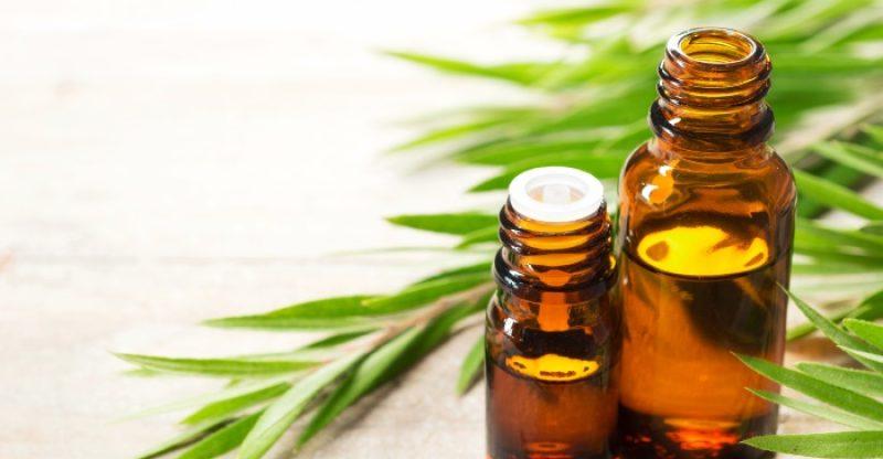 tea tree oil uses and benefits 800x416 - TEA TREA OIL 36 GEZONDE EIGENSCHAPPEN