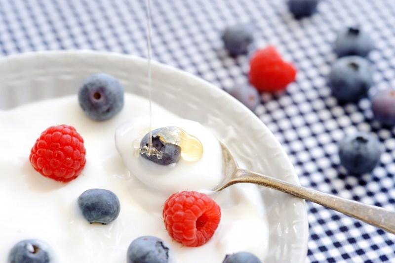 yogurt healthy breakfast - PROBIOTICA VOOR GEWICHTSVERLIES WAT ZIJN DE VOORDELEN